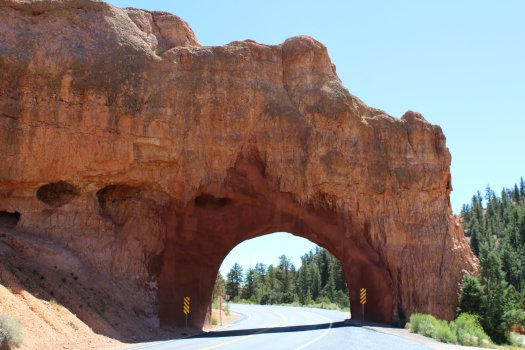 Nature tunnel not too far from the entrance to Dixie National Forest - Arizona Route 12