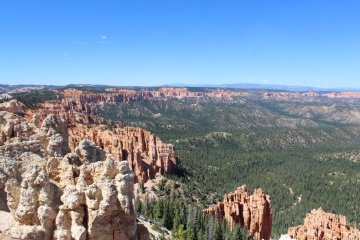 Looking into the canyon at Rainbow Point - Bryce Canyon National Park