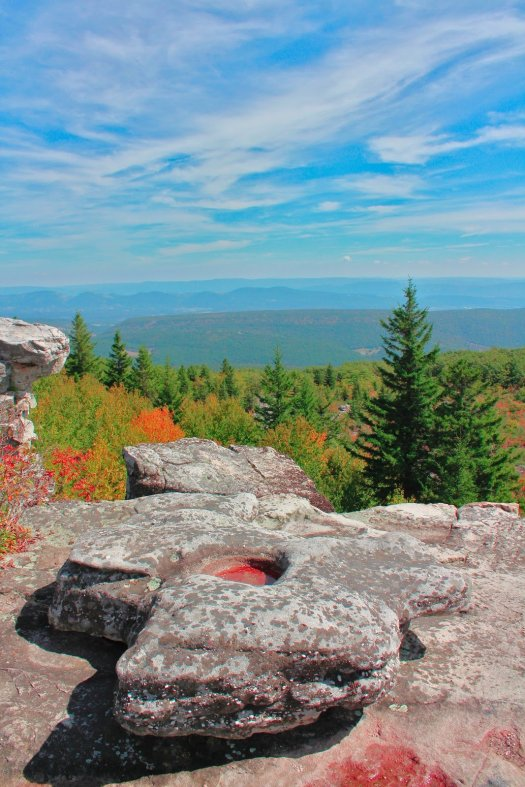 Eastern Continental Divide in Dolly Sods - 9/27/19