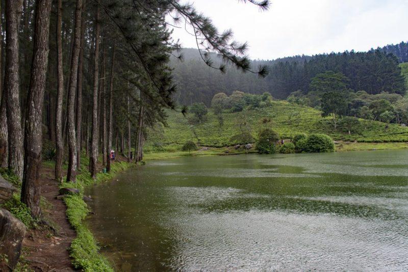 Footpaths around Sembuwatta Lake