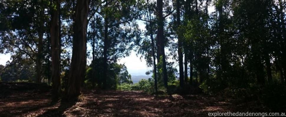 Mathias Rock Track Circuit Dandenong Ranges Walking Tracks