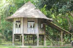 nipa-hut-philippines-old-house-wooden-house