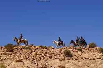Bedouin Cowboys