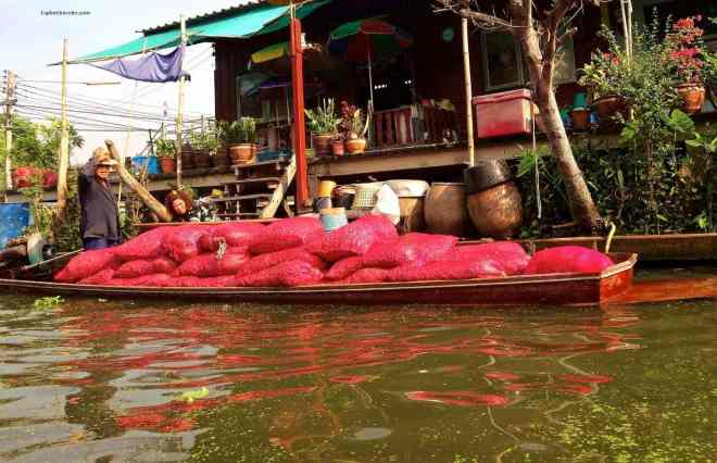 Transportation along the Damnoen Saduak Floating Market