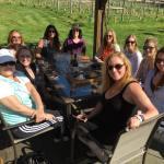 Wine tasting on Vashon Island. Where to go,
