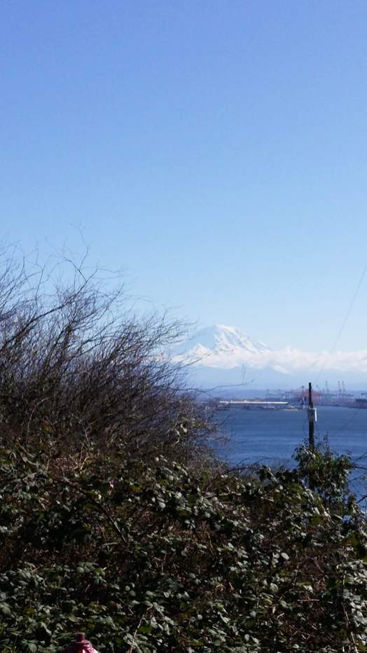 Mt Ranier view from Browns Point