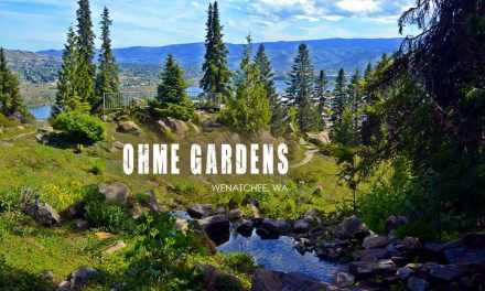 Ohme Gardens – A Journey Through An Evergreen Oasis