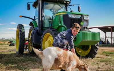 Cloudview Farms – Our Favorite New Spot in Ephrata, WA
