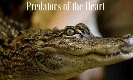 Predators of the Heart