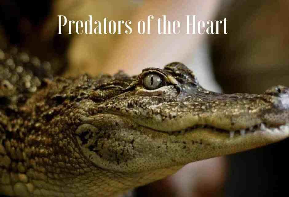 Predators of the Heart