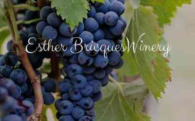 Esther Bricques Winery in Omak