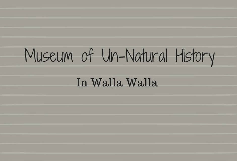 Museum of Un-Natural History