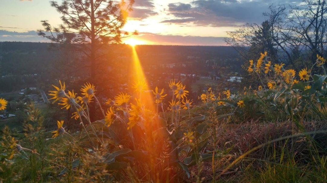 sunset-spokane