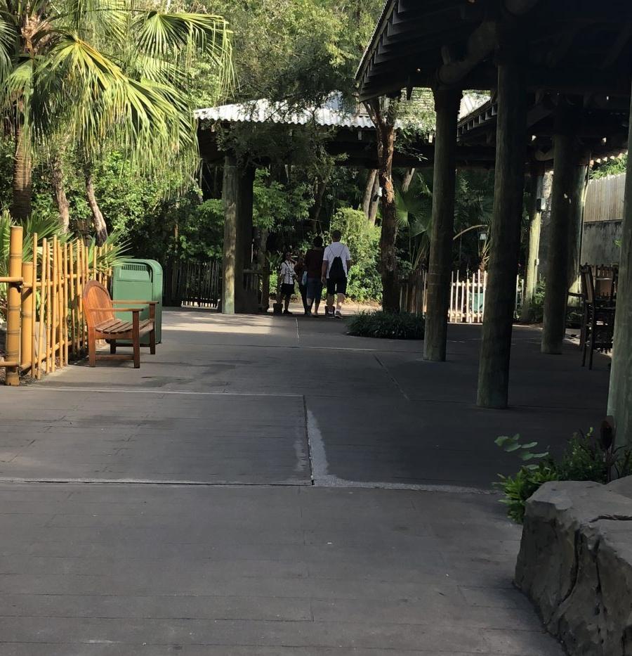 """""""Secret entrance"""" inside Rainforest Cafe at Disney's Animal Kingdom"""