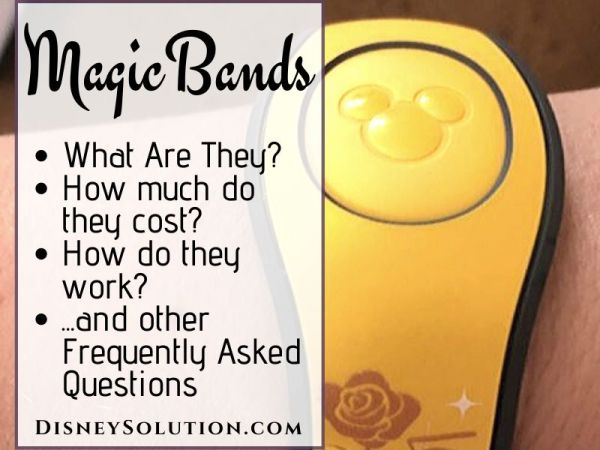 MagicBands Frequently Asked Questions