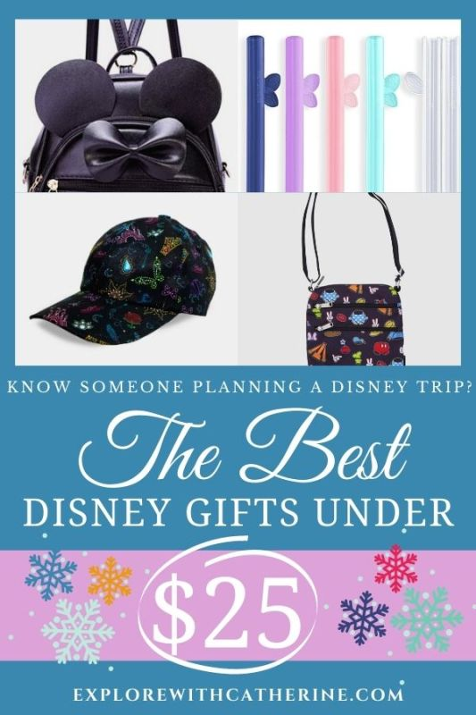 Looking For A Great Gift Under $25 For Disney Travelers?