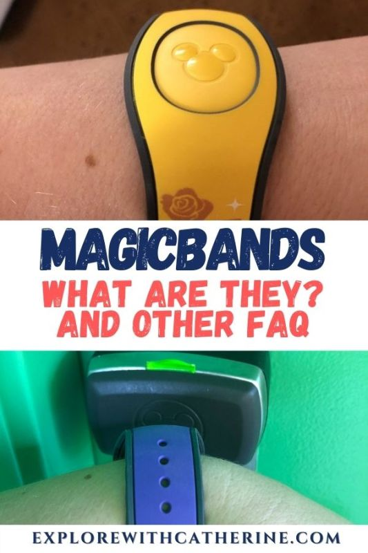 MagicBands. What are they? And other Frequently Asked Questions