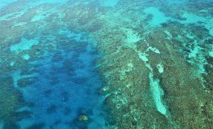 Cairns holidays