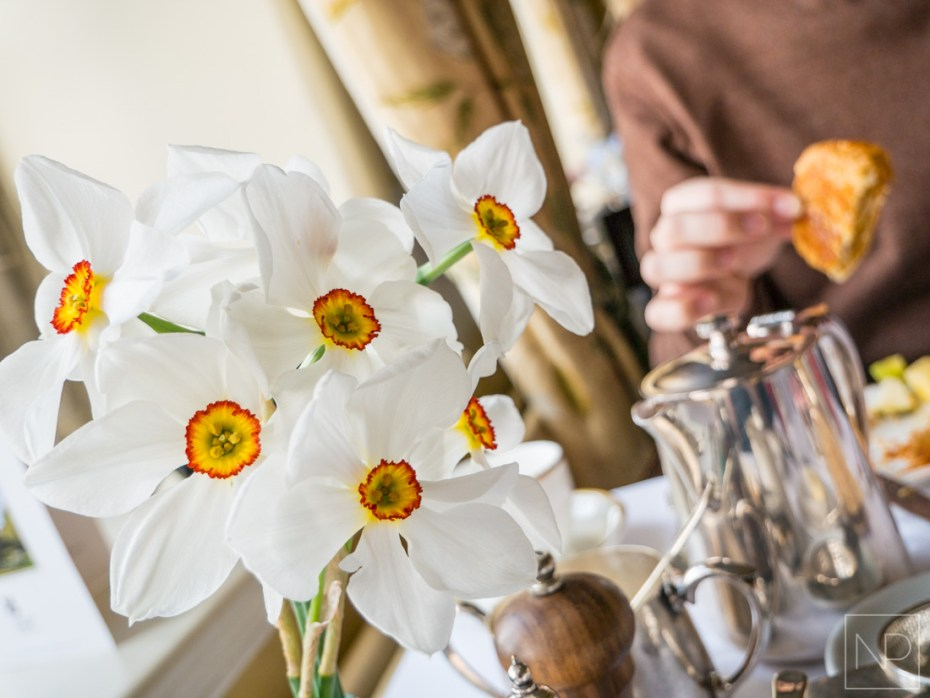 White flowers, places to eat in Llandudno