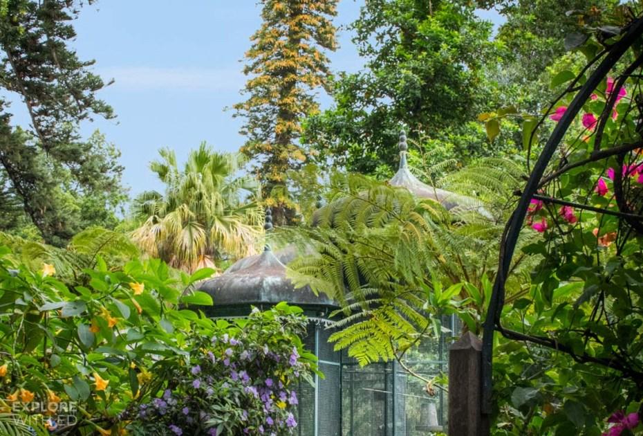 Funchal Botanical Gardens