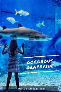 Gorgeous Grapevine - A weekend getaway from Dallas, Texas to the fun loving Grapevine. A family vacation hot spot - Great Wolf Lodge, Legoland, Sealife, and more!