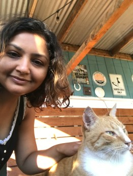 Tree - the house cat @ the hostel. She was loving like a dog :)