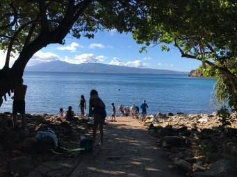 Honolua Bay2, Maui (Priyanka Upadhyay)
