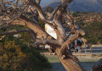 Kreta – und ab nach Norden