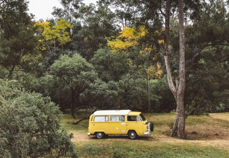 dog-friendly road trip bretti reserve