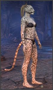 Body Markings of the Khajiit - Position 13