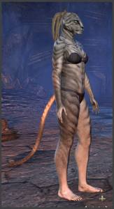 Body Markings of the Khajiit - Position 14