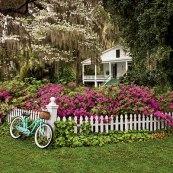 Fenced Flowers