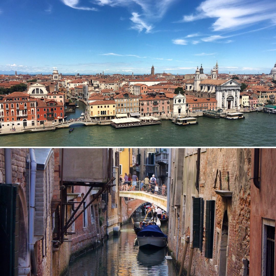 Venice Exploring Kiwis