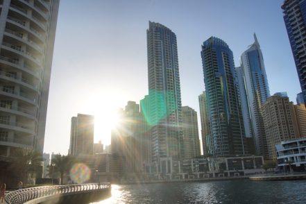 Xclusive Tours Dubai Exploring Kiwis Marina