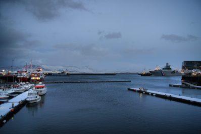 Wake Up Reykjavík Food Tour Review
