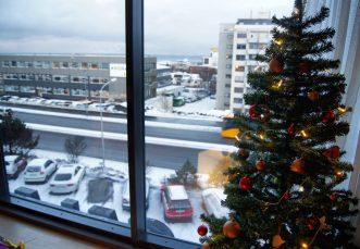 Galaxy Pod Hostel Reykjavik Iceland review
