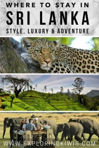 Sri Lanka, the Pearl of the Indian Ocean, offers something for almost everyone. Read our accommodation recommendations, tour provider of choice, transport guide and much more!