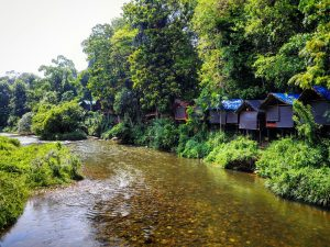 Borderlands glamping Sri Lanka riverside