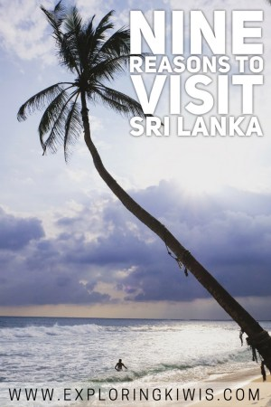 9 reasons to visit Sri Lanka right now! Follow along as we spell out the best parts about Sri Lanka and why you need to visit right away!