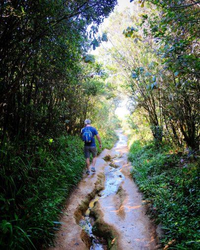 World's End Sri Lanka hike