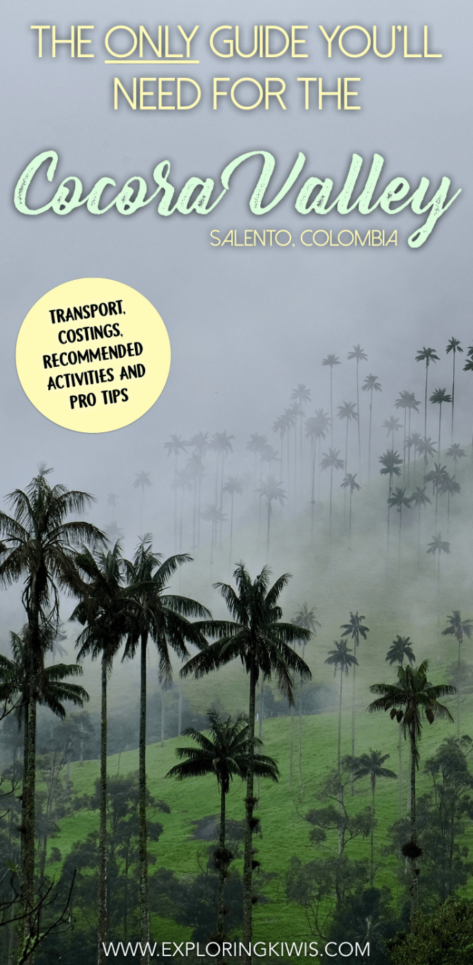 A complete guide to the Cocora Valley, near Salento, Colombia.  Check out the world\'s tallest palm trees, hike through beautiful cloud forest and see one of South America\'s favourite birds, the hummingbird!  Full transport information, costings and instructions are included.
