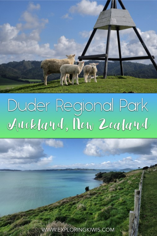 Duder Regional Park | Hiking | New Zealand | Auckland | Farmland | Beach views | Auckland Itinerary | Auckland Must-See #travel #auckland #hiking