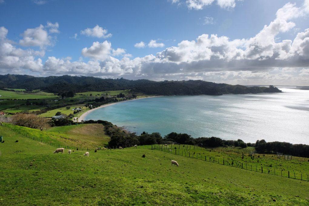 Ocean views Duder