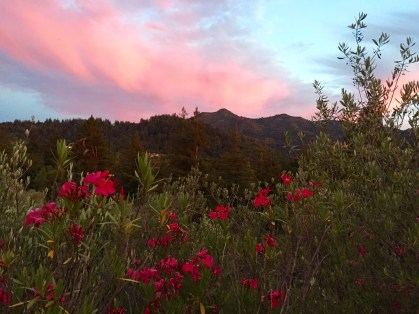 Sunset at Mt. Tamalpais