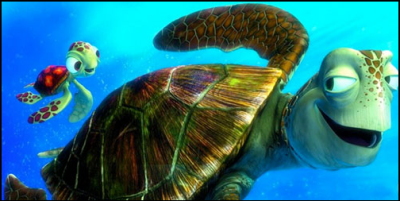 Squirt and Crush from Disney Pixar's Finding Nemo are Green Sea Turtles Brazil TAMAR South America travel link movie adventure