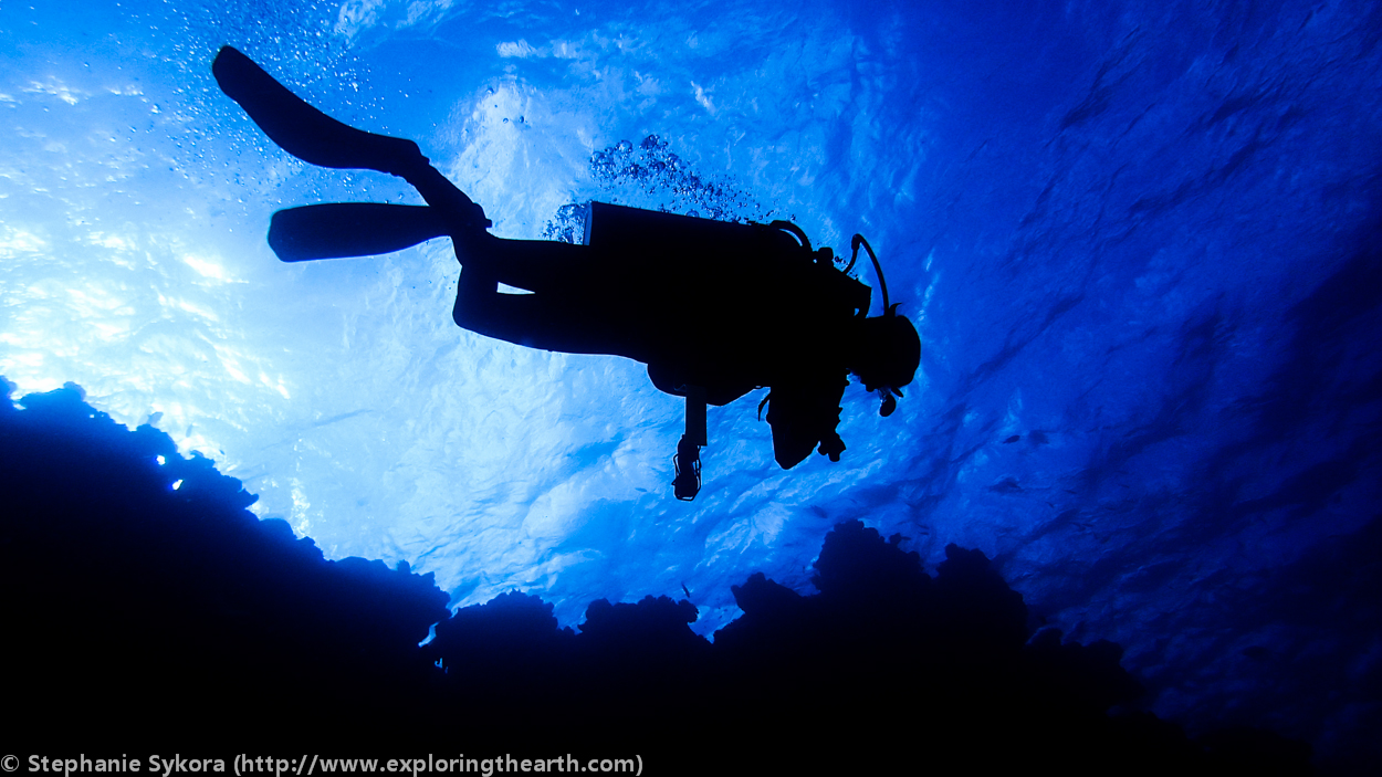 What the great barrier reef is made of australia exploring the earth - Dive great barrier reef ...