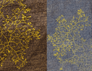 """Biogenic Design I: These are examples from a series of works  featuring  purely biogenic designs, which explore the inherent creativity of, and which use nature, to directly generate textile designs.  Physarum polycephalum is an intriguing and striking microorganism that exhibits simple """"intelligence"""". In this respect, it will move toward favourable and away from hostile environments, can solve a maze in its search for food, and has a primitive memory. The intricate yellow designs on the denim material are the living slime mould itself and more than this,  are a visible expression of its intelligence as it explores its environment and searches for food. The living design moves at around 1mm per hour and its pattern changes as the slime mould responds """"intelligently"""" to its environment"""