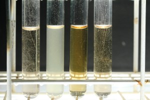 The natural samples from left to right 1-4