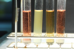 The  samples from left to right 1-4 with universal pH indicator added. The red/orange and yellow colours reveal  various degrees of acidity.