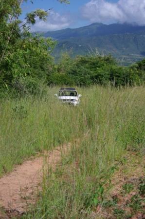 road-to-farm